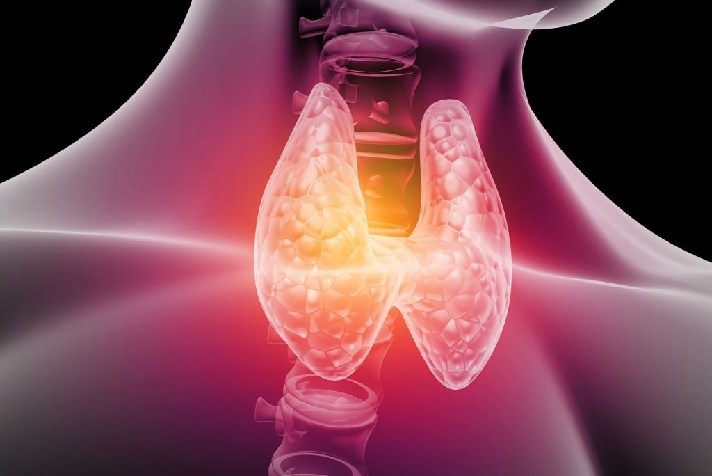 Hypothyroidism Diseases and Conditions Treatment