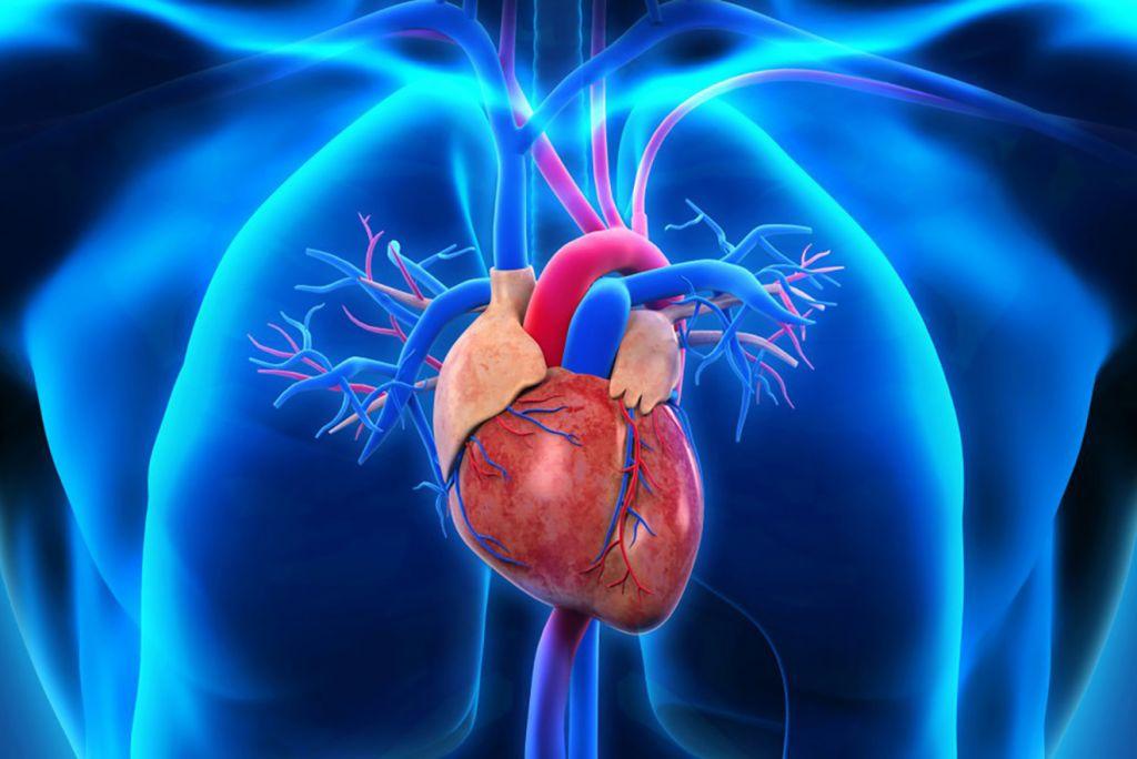 Heart Disease Treatment