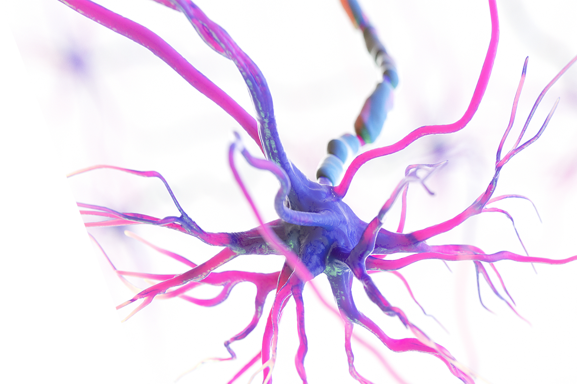 Pure Medical Group - HBOT Brain Cells 3