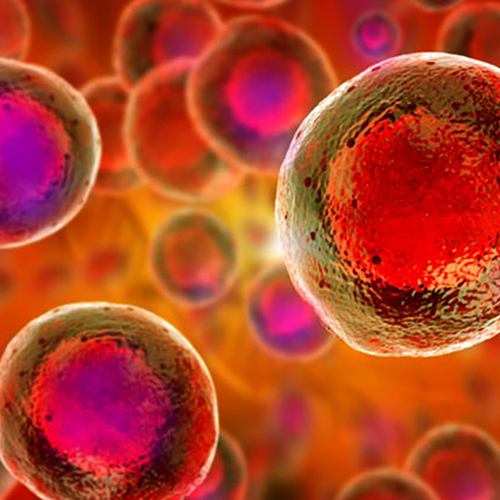Stem Cell Therapy Mobile 02